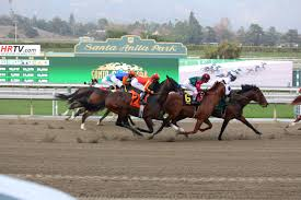 hästkapplöpning betta